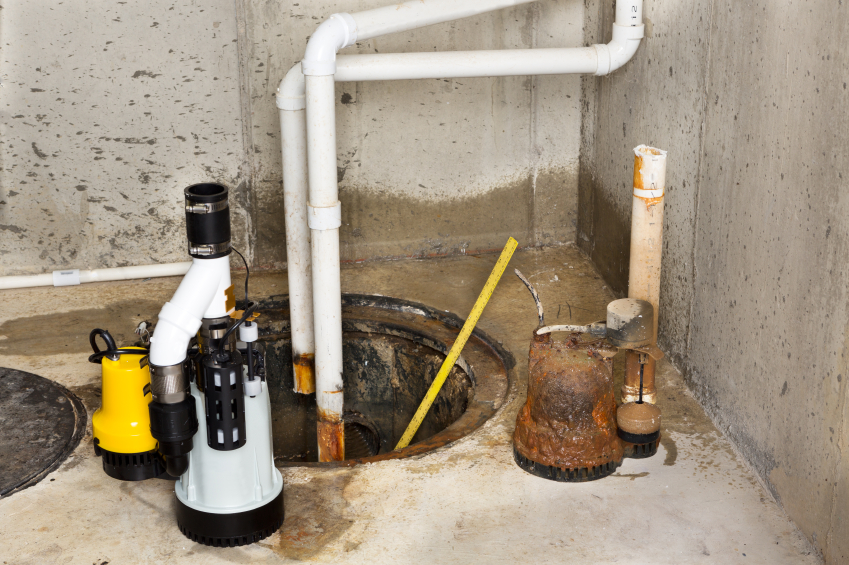 Pedestal Vs Submersible Sump Pump Blain S Farm Fleet Blog
