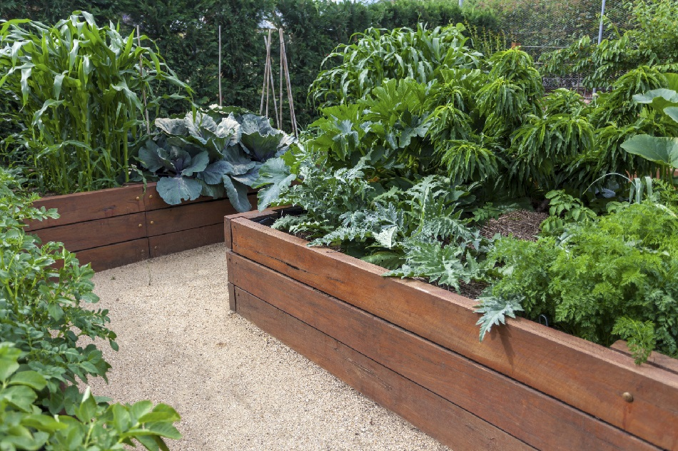 Tips For Building Raised Garden Beds Blain S Farm Fleet Blog