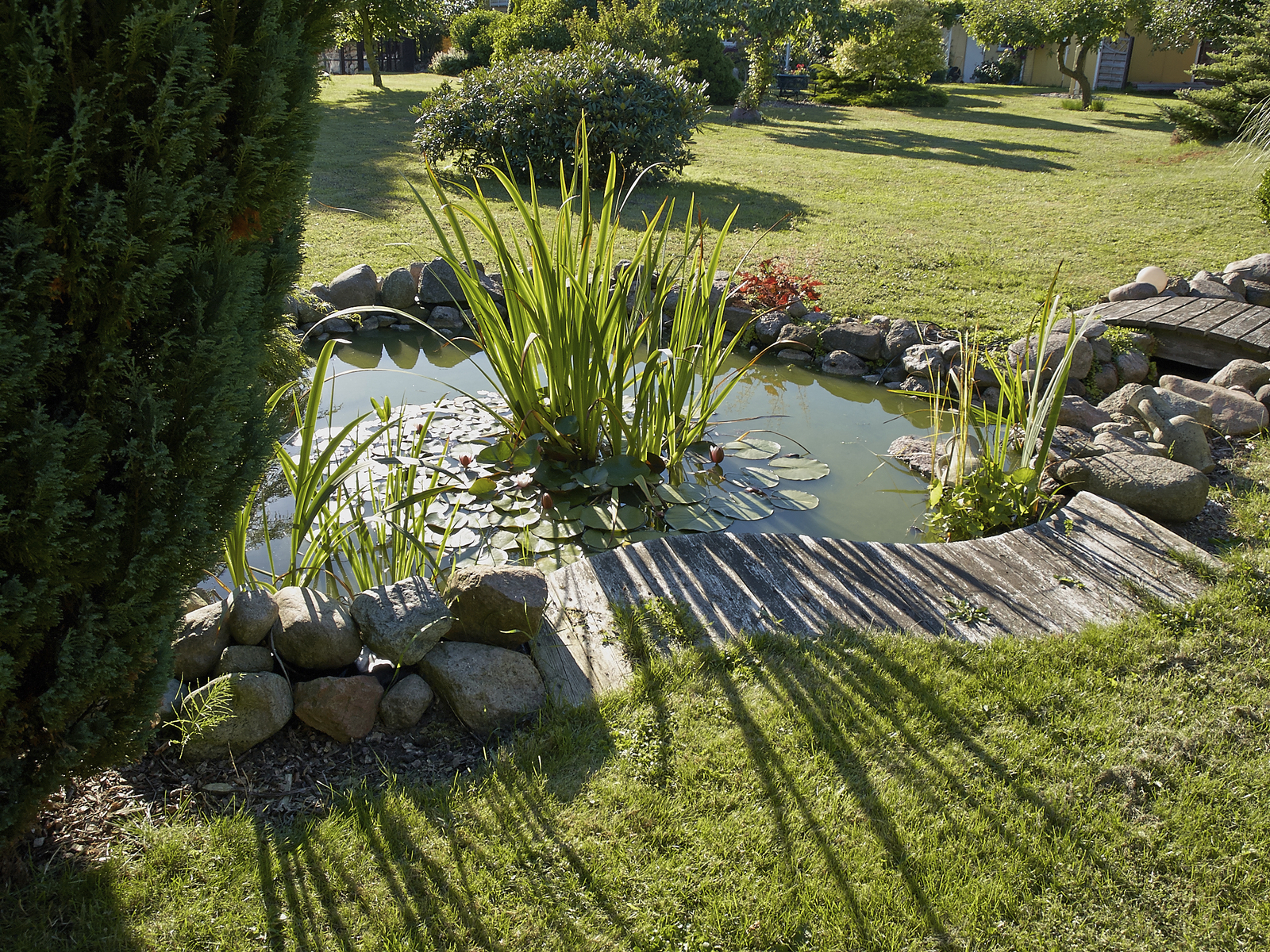 Water Gardens Backyard Ponds Blain S Farm Fleet Blog